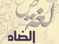 معهد المخطوطات العربية يحتفل باليوم العالمي للغة العربية