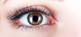 """العلماء يتجهون بقوة نحو  عمليات """" زرع شبكية العين """"  إنقاذاً للمصابين بالعمي"""