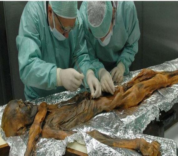 Photo of بعد تحليل الشفرة الوراثية للفراعنة …. علماء : سكان مصر تغيروا خلال الـ 1500 سنة الماضية بشكل بالغ