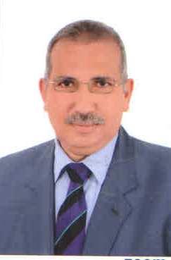د عادل عامر - أوراق عربية