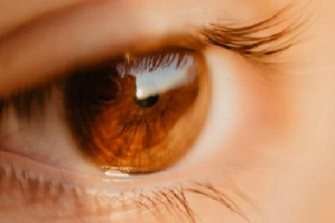 عين ، موقع أوراق عربية ، قصائد فصحي