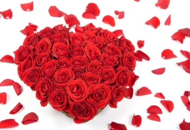 قلب من ورود ، موقع أوراق عربية - قصائد فصحي